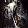 真っ暗な洞窟内…世界最古の鍾乳洞が私たちに伝える事っていったいなんでしょう。 そんな、鍾乳洞の中で明かりという明かりを全て消して、真っ暗闇を体験しました。明るいところから暗い中に入るとはじめは真っ暗でなにも見えないけれど […]