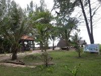 s-RIMG13835