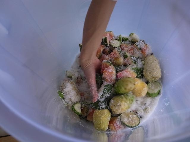 プーケットの楽しみ方 タイの果物で酵素ジュース作り (ボーセン村)